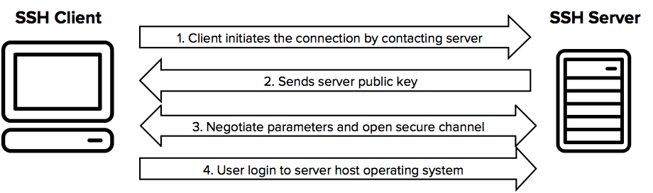 How does the SSH protocol work?