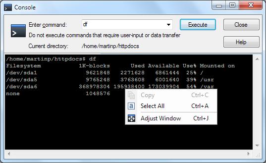 WinSCP Command Line Console