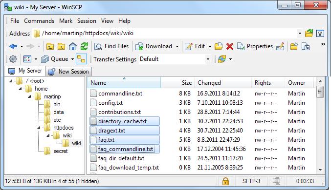 Win SCP explorer user interface